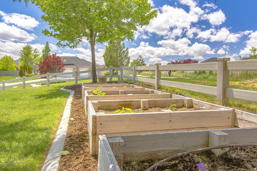 Hochbeet Kaufen Oder Selber Bauen Standort Pflanzen Befullung