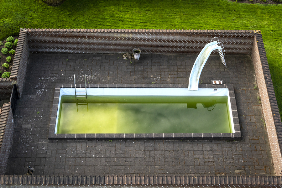 Pool wasser grün keine algen
